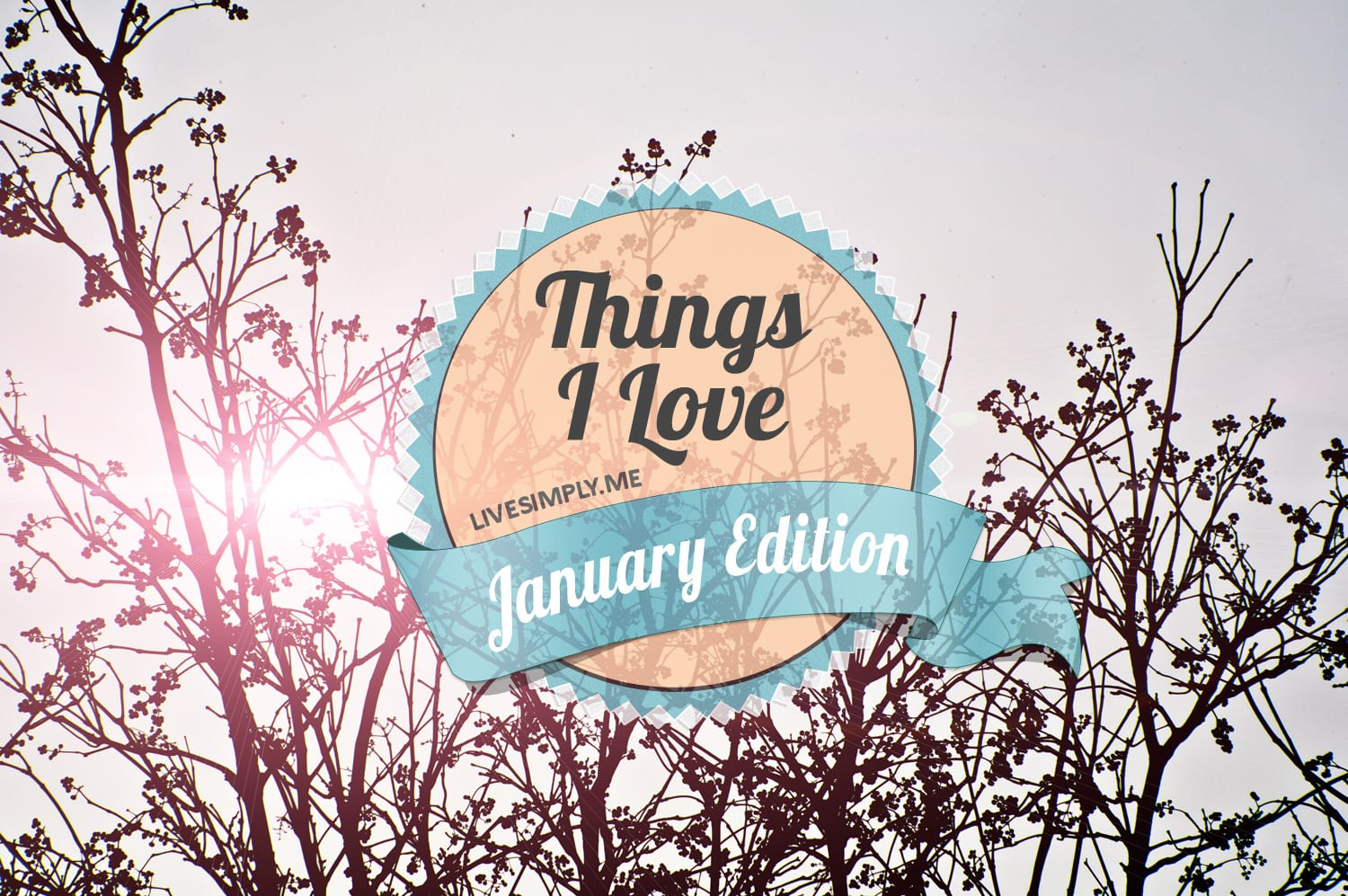 Things-I-Love-Jan