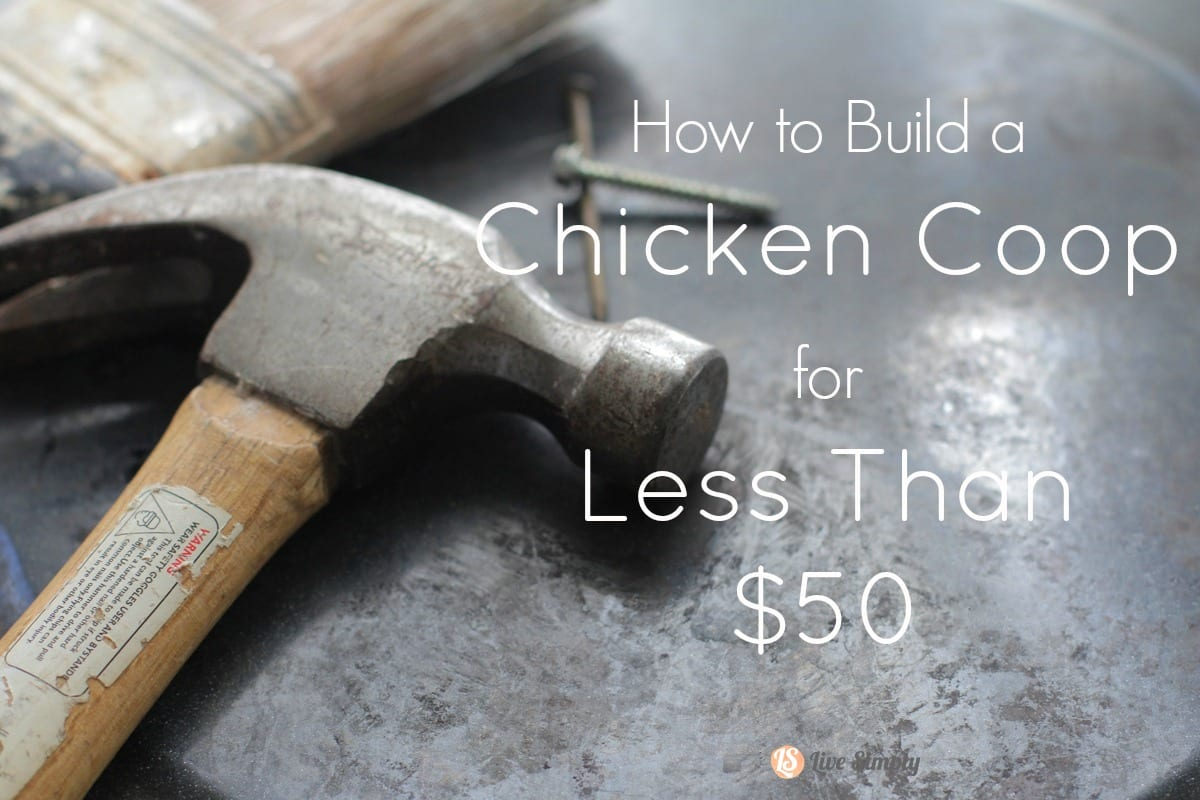 How to build a chicken coop for less than 50 live simply for Cheapest way to build a building