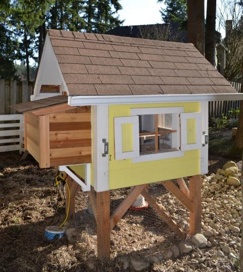 How to Build a Chicken Coop for Less Than $50 - Live Simply