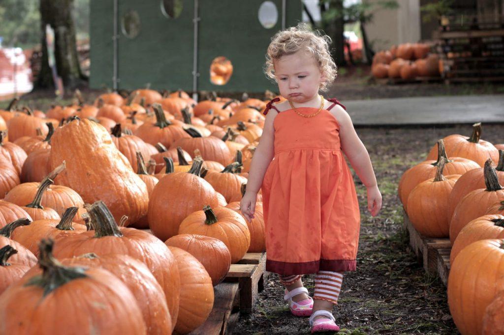 Pumpkin-IMG_9042