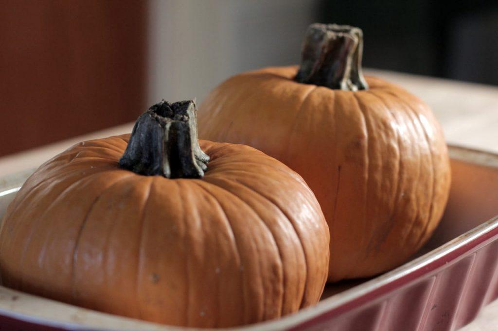 Pumpkin-IMG_9100
