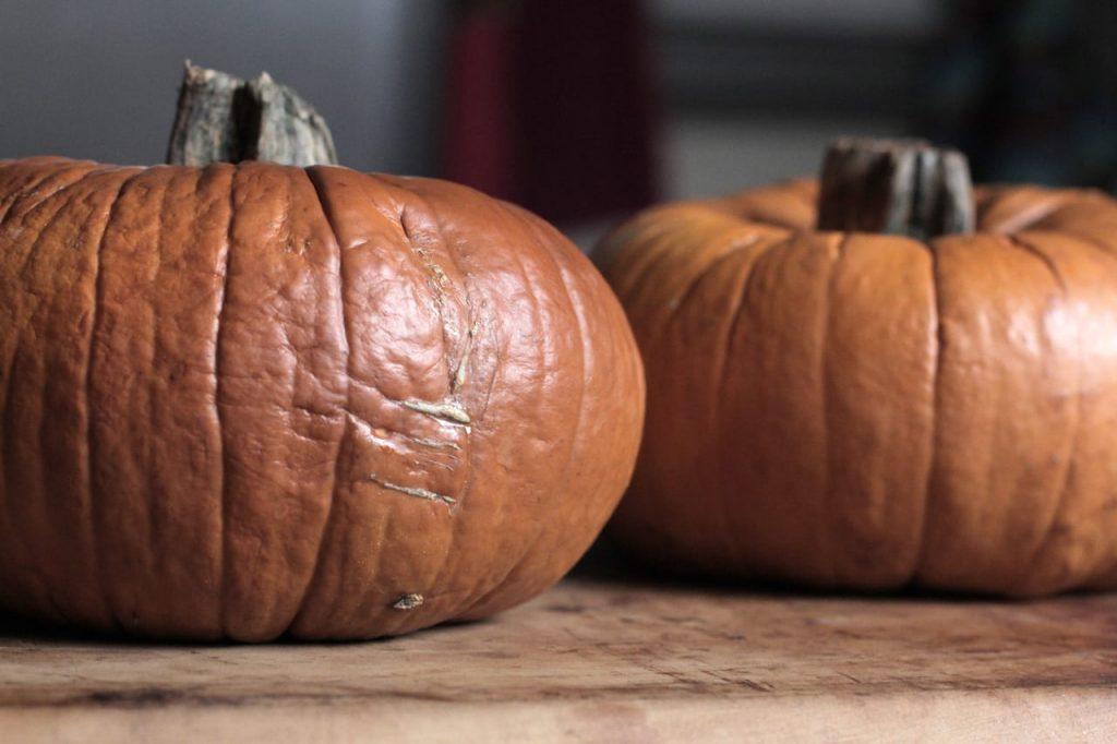 Pumpkin-IMG_9118