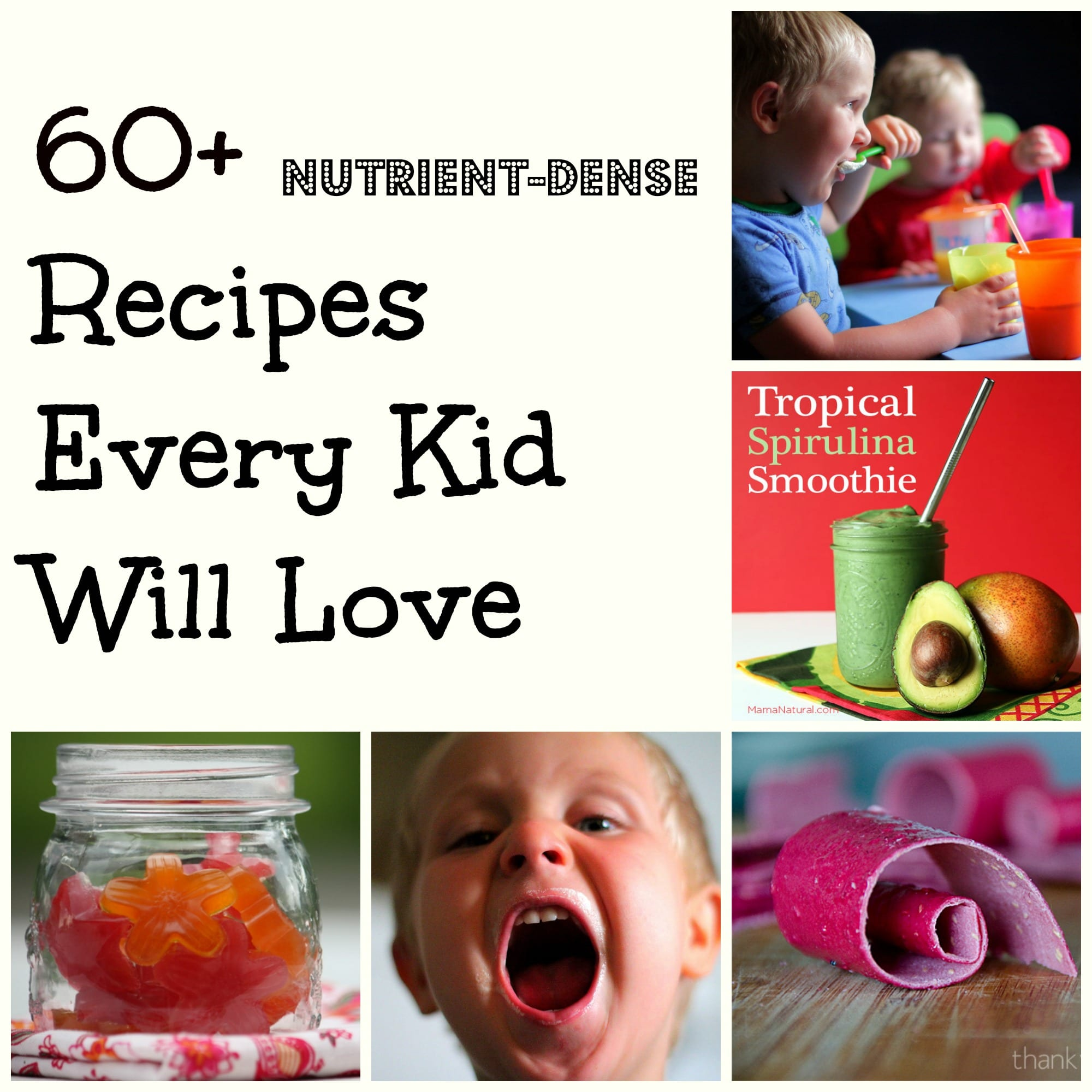 17 Easy Campfire Treats Your Kids Will Love: 60 Plus Nutrient Dense Recipes Every Kid Will Love