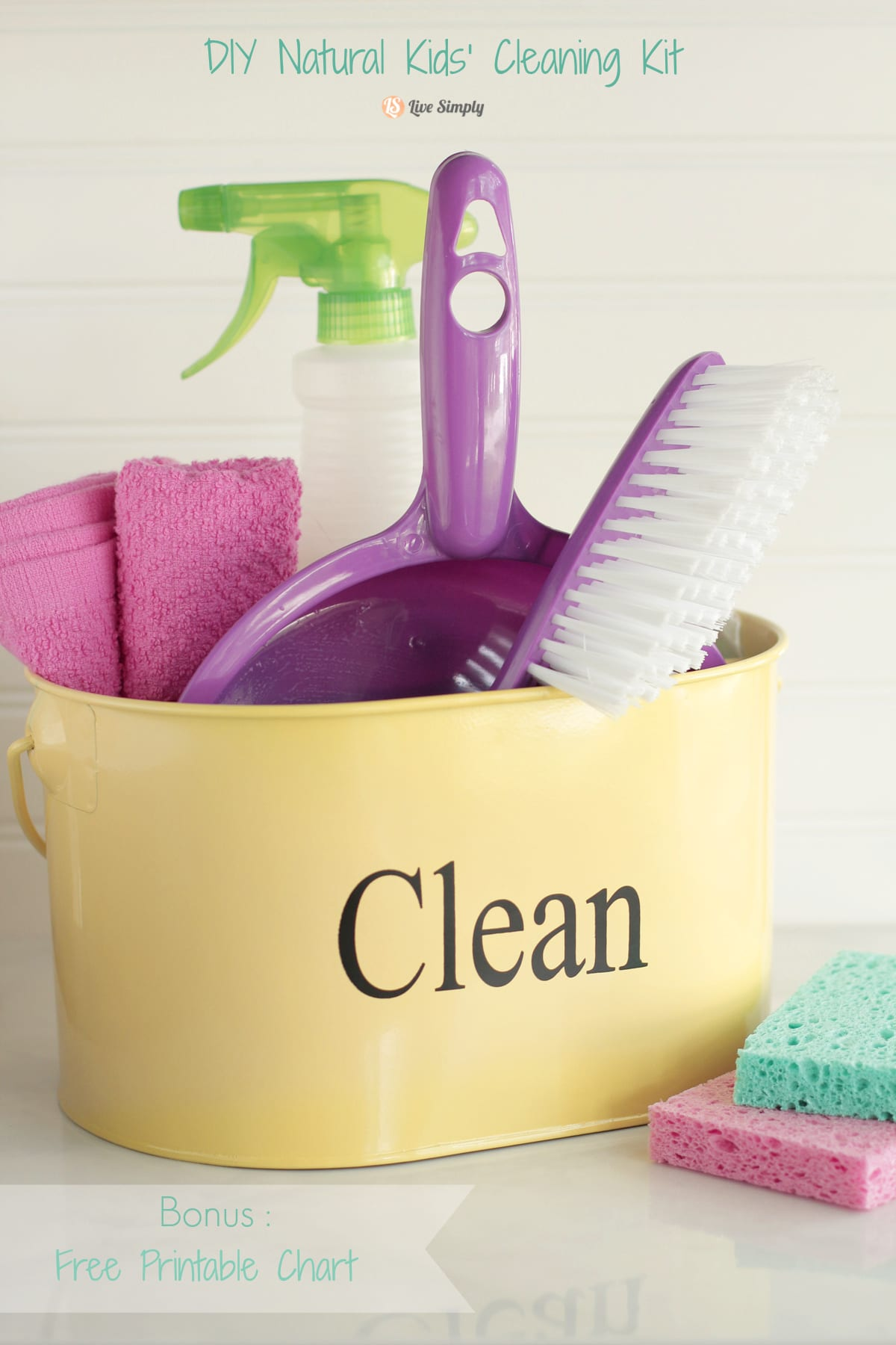 kids cleaning kit