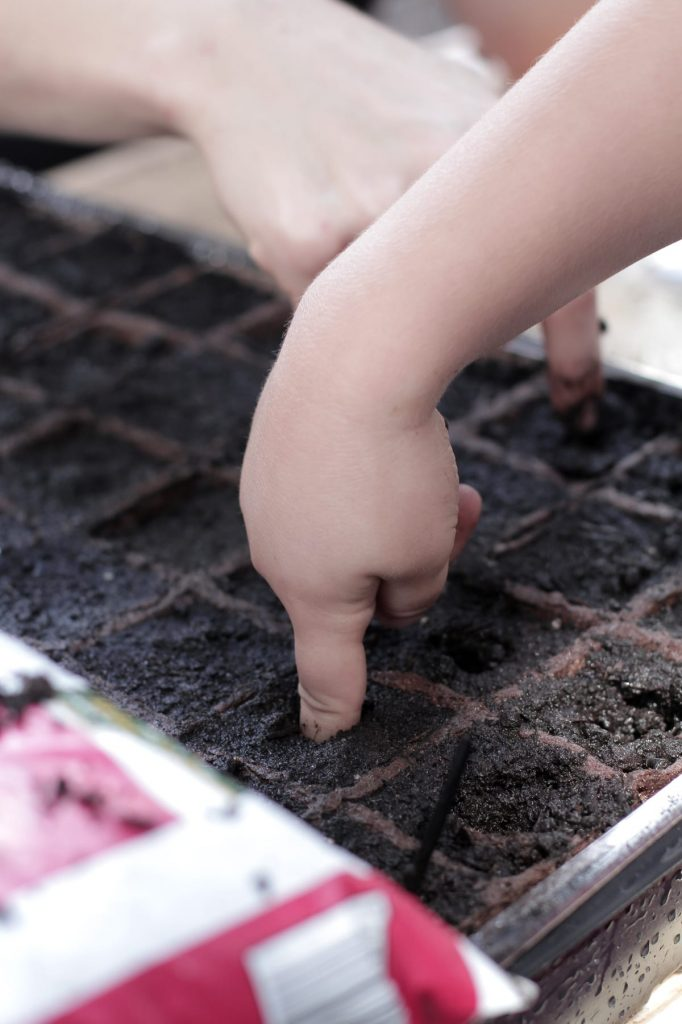 4 great tips for planting your real food garden! #3 is very important!