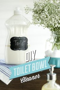 DIY Toilet Bowl Cleaner: A simple, all natural solution!