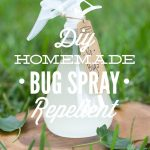 DIY Homemade Bug Spray Repellent