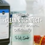 How to Clean and Disinfect a Toilet Bowl, Naturally