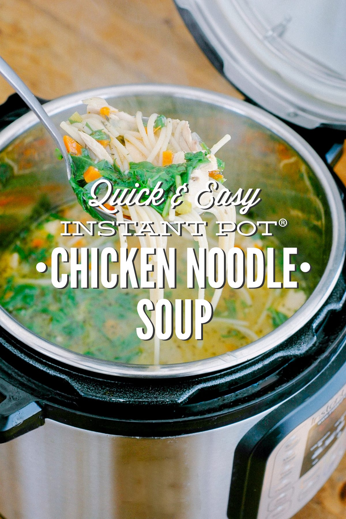 Quick And Easy Instant Pot Chicken Noodle Soup Pressure