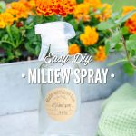Easy DIY Mildew Spray