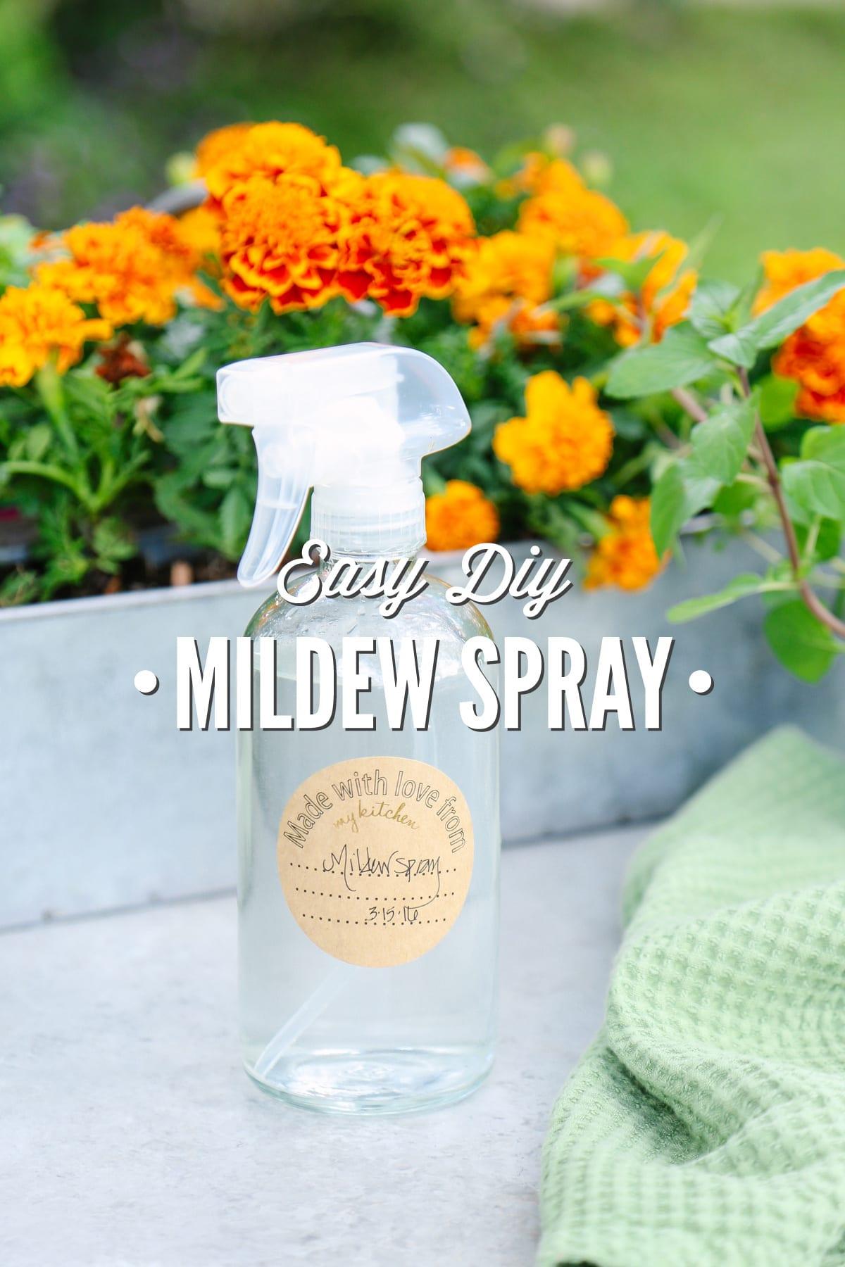 How to Use Homemade Garden Sprays Safely How to Use Homemade Garden Sprays Safely new pictures