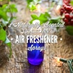 Four Naturally-Scented Holiday Air Freshener Sprays