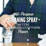 All-Purpose Cleaner Spray with Grease-Cutting Power