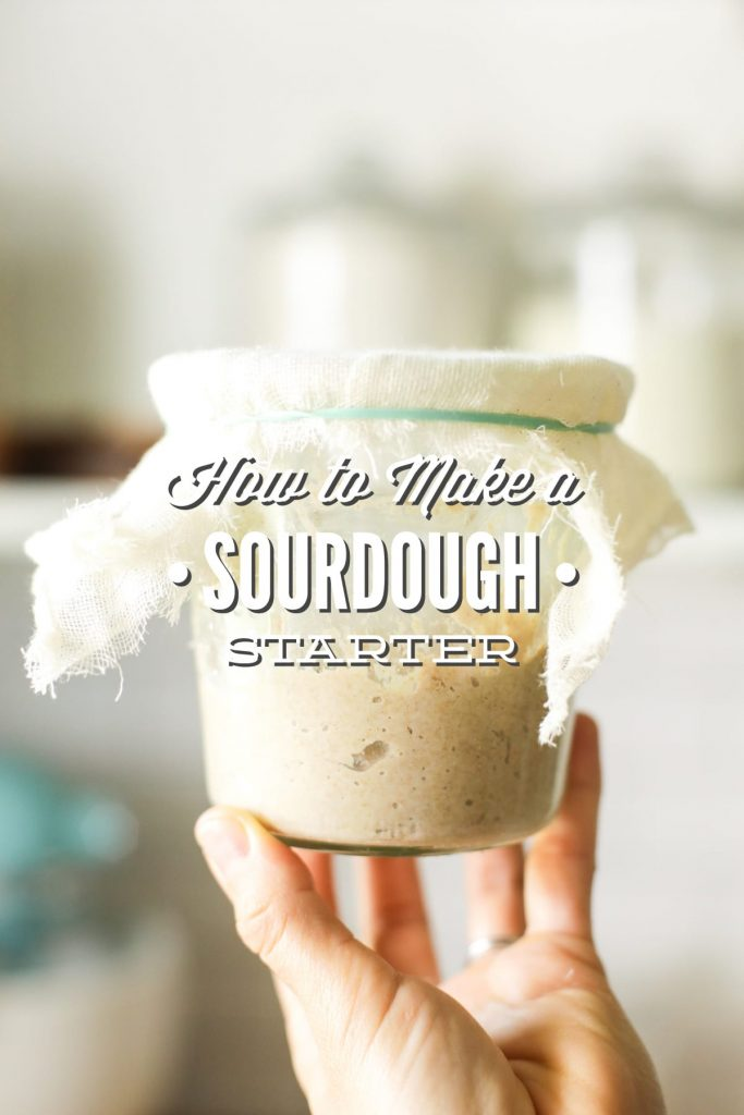 Consider this Sourdough Start 101! Use my experience, testing & even failures to help you overcome your sourdough fears!