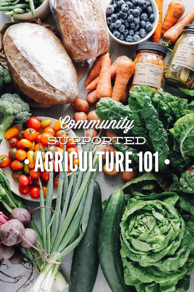 Community Supported Agriculture 101. Find out the answers to all of your burning questions about CSAs. A CSA is a great way to support local farmers!