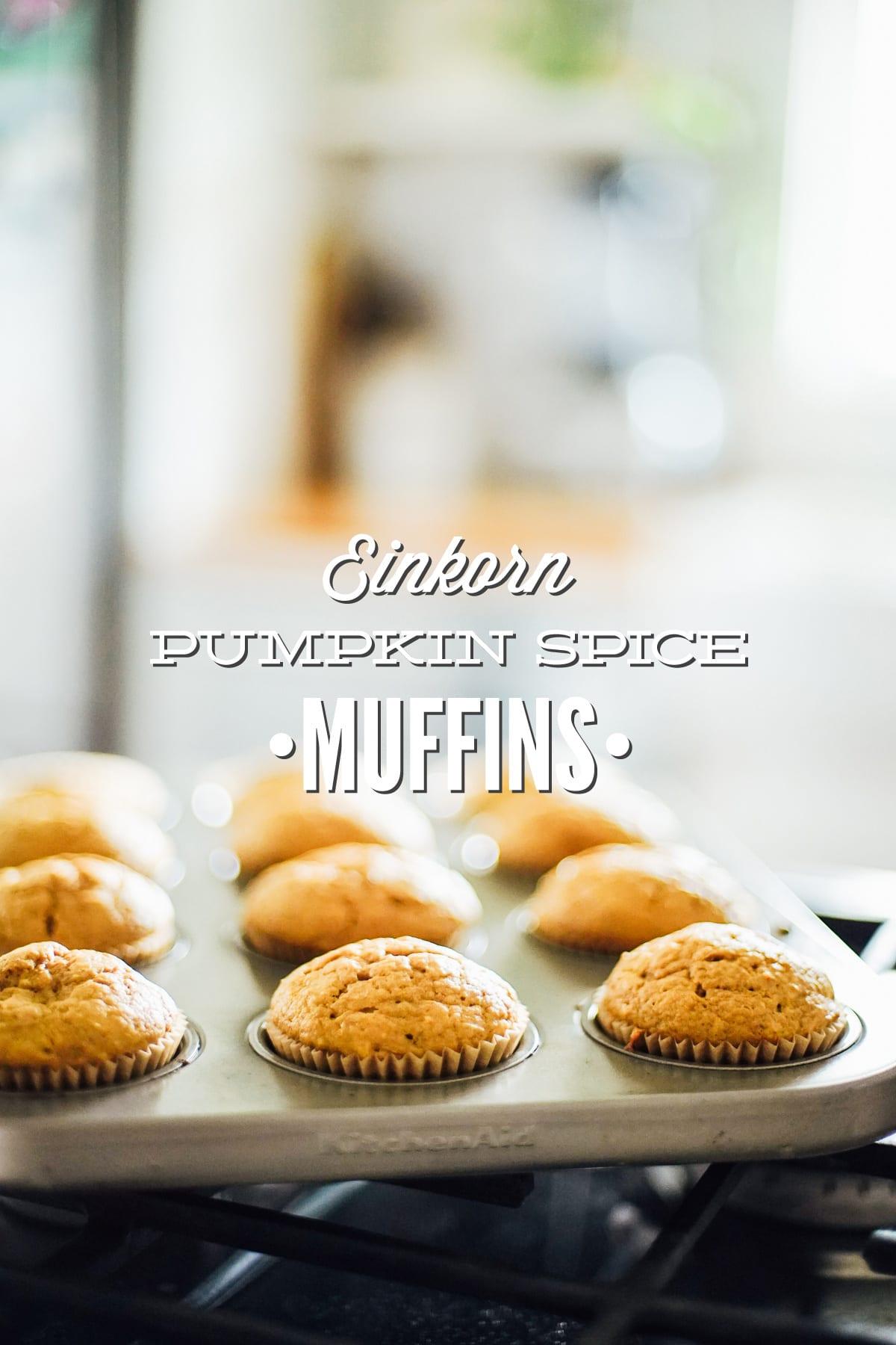 einkorn pumpkin muffins