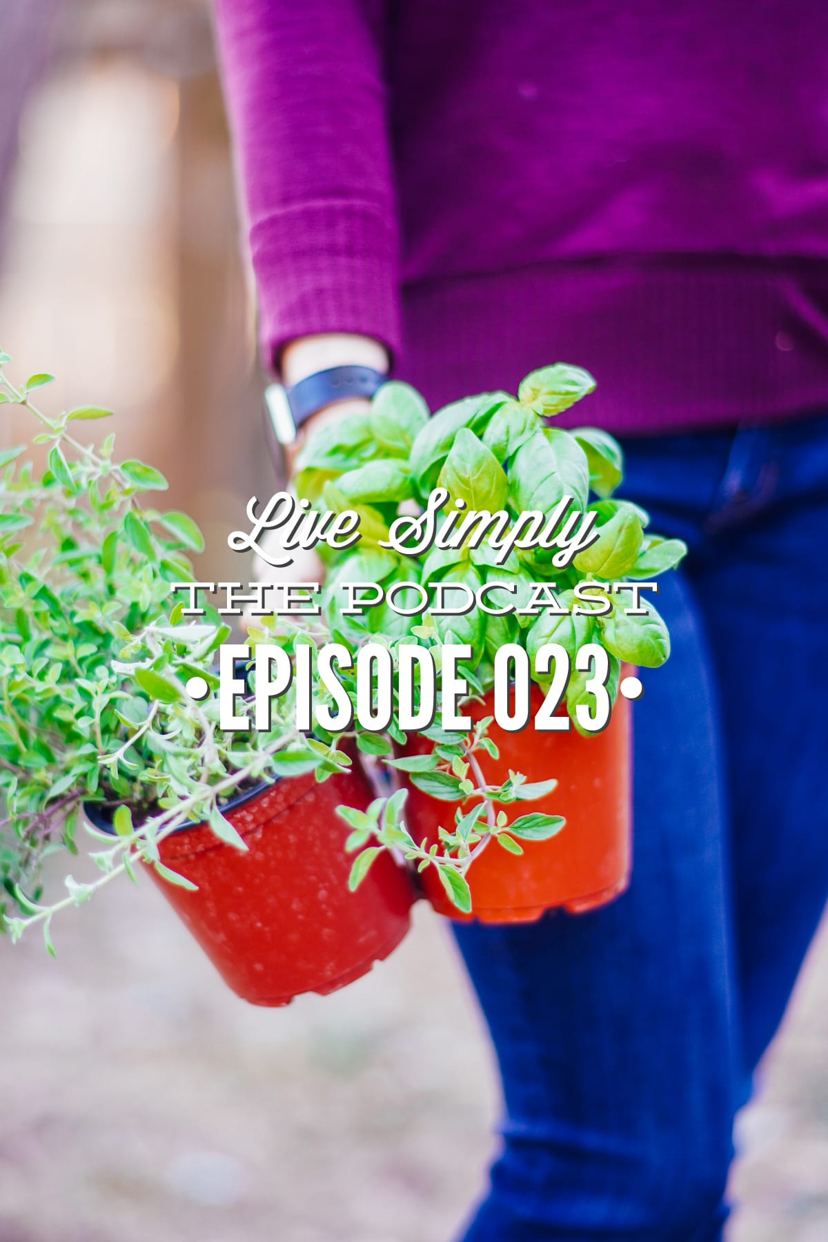 Episode 23 Live Simply Podcast