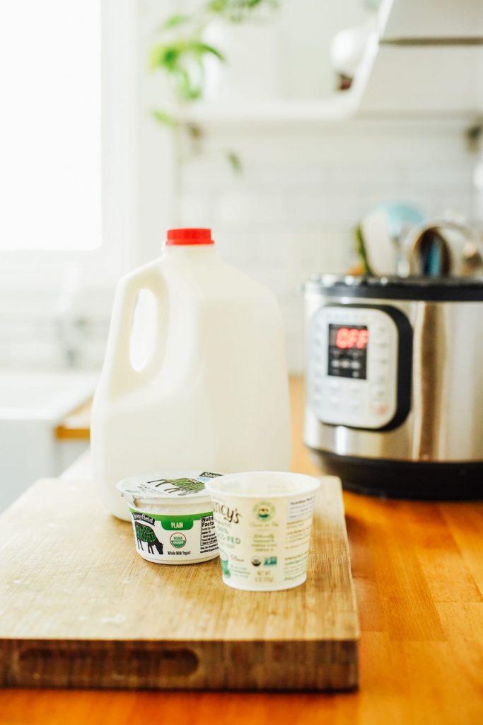 Milk and starter yogurt for making homemade yogurt