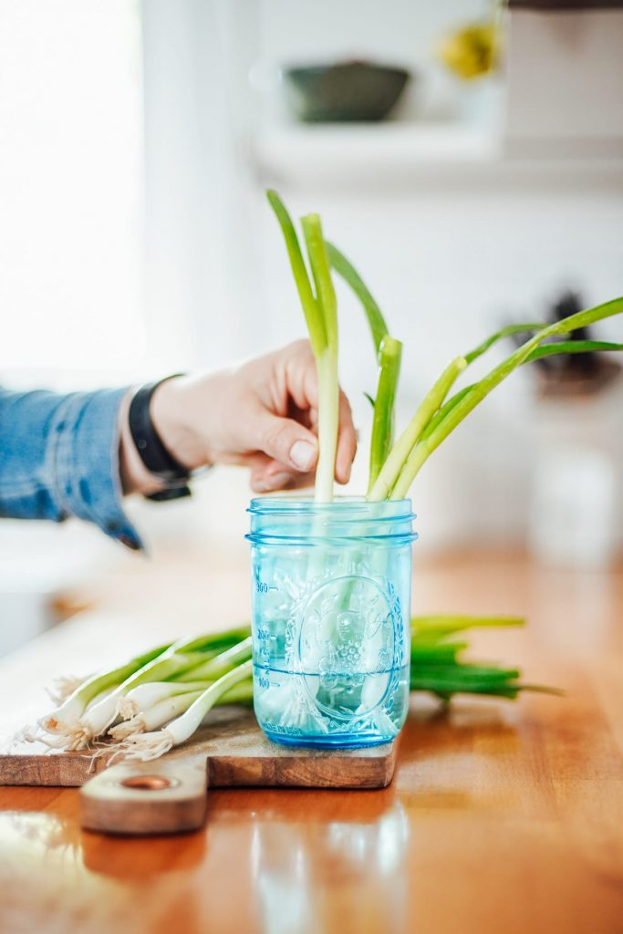 store green onions in water